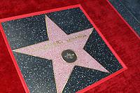 LOS ANGELES - NOV 30:  Lin-Manuel Miranda Walk of Fame Star at the Lin-Manuel Miranda Star Ceremony on the Hollywood Walk of Fame on November 30, 2018 in Los Angeles, CA