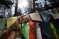 Prayer flags are attached to trees in the forests in the mountains of Jiuzhagou. The relationship between the local Tibetan people and the natural environment is a close one and traditionally has been one of balance. The name Jiuzhaigou translates as Nine Village Valley, relating to the nine Tibetan villages which are located within the valleys of the park.