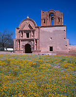 AZBD_03 - Remains of mission church San Jose de Tumacacori originally built in early 1800's and spring wildflowers, Tumacacori National Historical Park, southern Arizona, USA --- (4x5 inch original, File size: 6000x7691, 132mb uncompressed) .