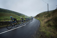 Bernie Eisel (AUT) at the helm<br /> <br /> 2013 Tour of Britain<br /> stage 1: Peebles - Drumlanrig Castle, 209km