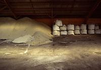 FRANCIA, Bretagna, le saline di Guerande. Il sale si forma per evaporazione grazie all'azione del sole e del vento e viene raccolto in modo artigianale, (da giugno a settembre), secondo un antico metodo celtico che prevede l'uso solo di pale in legno e non di metallo che potrebbe contaminarne la purezza. Questo sale non viene trattato con sbiancanti e non subisce alcun tipo di raffinazione, per questo conserva il suo caratteristico colore grigio. Interno della fabbrica. Sacchi di sale.