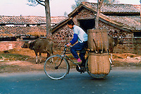 Worker loaded with produce on the back of her bike. Pictures taken in Canton China in 1977 at the time of the cultural revolution.