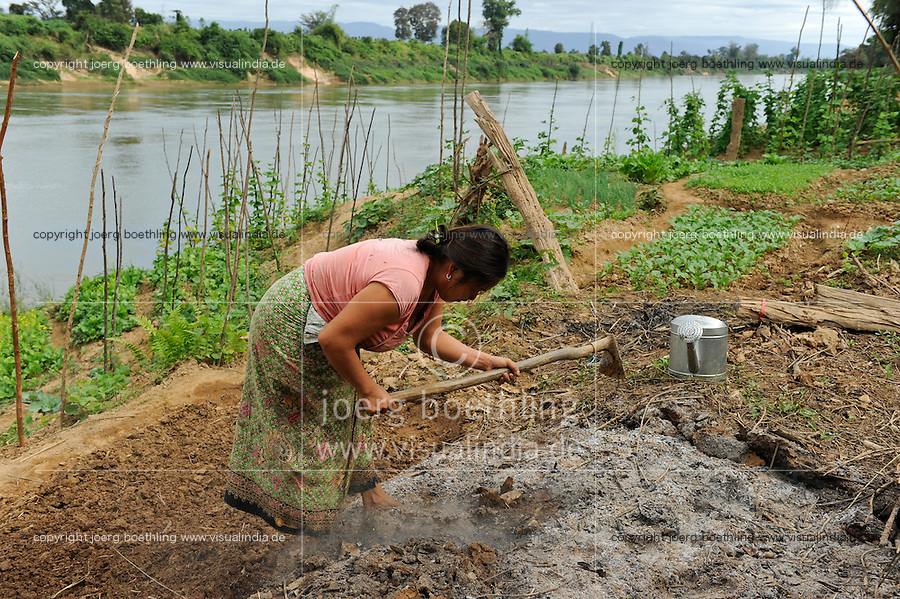 Laos, woman cultivates vegetable field near river, improvement of soil with compost and ash / Laos, Farmerin baut Gemuese an einem Fluss an, Verbesserung des Bodens mit Kompost und Asche