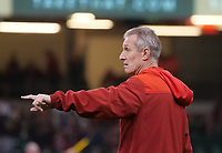 Wales Rob Howley during the pre match warm up<br /> <br /> Photographer Ian Cook/CameraSport<br /> <br /> Under Armour Series Autumn Internationals - Wales v Tonga - Saturday 17th November 2018 - Principality Stadium - Cardiff<br /> <br /> World Copyright © 2018 CameraSport. All rights reserved. 43 Linden Ave. Countesthorpe. Leicester. England. LE8 5PG - Tel: +44 (0) 116 277 4147 - admin@camerasport.com - www.camerasport.com