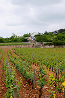 Michel Picard in his helicopter vineyard le montrachet puligny-montrachet cote de beaune burgundy france