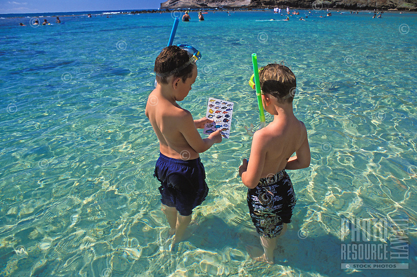 Two boys (age 9) use their reef fish I.D. card to help find Hanauma Bay's wide variety of colorful fishes.