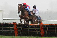 Race winner Poole Master ridden by Chris Honour jumps the last in the the Berry Bros & Rudd National Hunt Novices Hurdle - Horse Racing at Newbury Racecourse, Berkshire