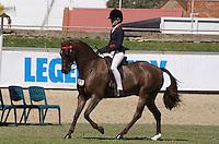 Rider 14 U16