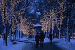 Evening winter scene on Commonwealth Ave., Boston, MA, People walking dogs.