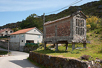 Horreo. Typical stone built granary for storage and vermin protection, Chandebrito, Vigo, Galicia, Spain. .....Copyright..John Eveson,.Dinkling Green Farm,.Whitewell,.Clitheroe,.Lancashire..BB7 3BN.Tel. 01995 61280.Mobile 07973 482705.j.r.eveson@btinternet.com.www.johneveson.com