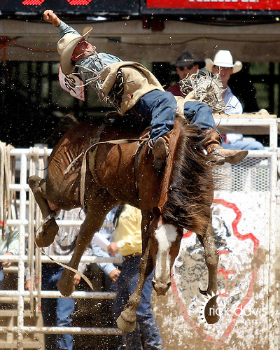 PRCA cowboy Scott Montague scores an 86 point bareback bronc ride on Pinball Wizard to win the short go round with a total of 252 on three head at the 111th Cheyenne Frontier Days rodeo on July 29, 2007 in Cheyenne, Wyoming.