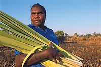 Patricia Woolla collecting pandanus leaf for basketmaking, Aurukun, Cape York Peninsula.