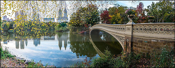 The Bow Bridge in Central Park with yellow leaves.