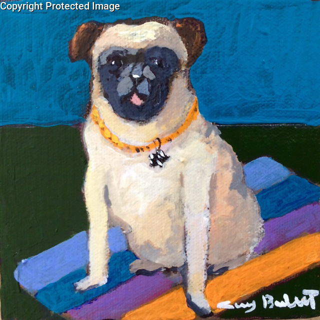 &quot;Pug&quot;<br />