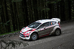 14th September 2012 - Devils Bridge - Mid Wales : WRC Wales Rally GB SS6 Myherin stage : Evgeny Novikov (RUS) and Ilka Minor (Aut) in their Ford Fiesta RS WRC.