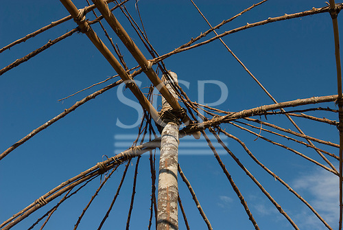 Xingu Indigenous Park, Mato Grosso State, Brazil. Aldeia Barranco Queimado. Construction of house frame.