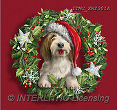 Marcello, CHRISTMAS ANIMALS, WEIHNACHTEN TIERE, NAVIDAD ANIMALES, paintings+++++,ITMCXM2001A,#XA# ,Christmas wreath ,dog