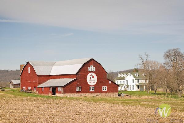 Pennsylvania Wilds barn and farmhouse. Pennsdale, PA.