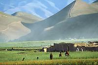 Afghan landscape  by Bala Murghab