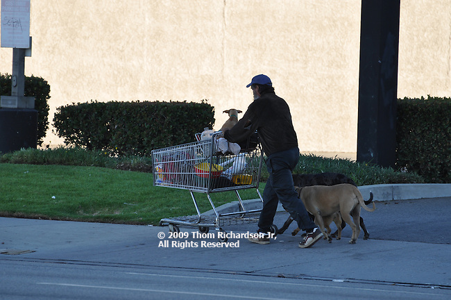 Homeless Man, Van Nuys California