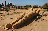 Low angle view of fallen Atlas (or Telamon), Temple of Olympian Zeus, 5th cenbtury BC, Agrigento, Sicily, Italy,  pictured on September 12, 2009, in the morning. The Temple of Olympian Zeus was probably begun after the Battle of Himera (480 BC), but was never completed. It was eventually destroyed by an earthquake.  Only a broad stone platform, ruined pillars and blocks of stone survive. Even so, it was known as a magnificent and huge structure, with colossal nude male statues c.7.5metres high, standing between massive columns against a curtain wall. One of these fallen atlases lies amongst the ruins of the temple. The Valley of the Temples is a UNESCO World Heritage Site. Picture by Manuel Cohen.