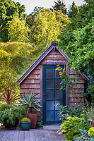 Rustic garden tool shed on deck in California country garden with potted plants; Diana Magor Garden