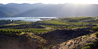 Lake Chelan is home to an agricultural economy that is primarily apples and recently boutique wineries and vineyards.