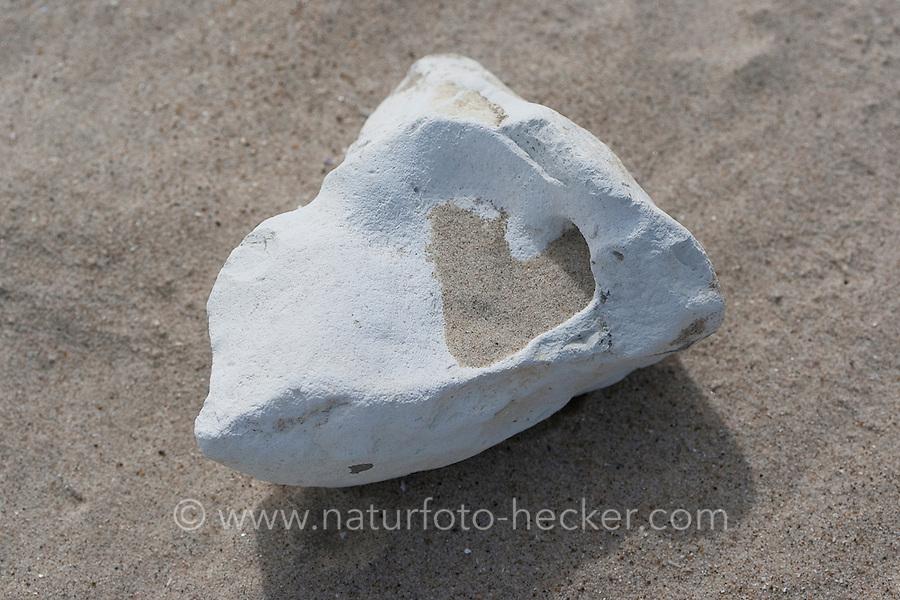 Naturkunst am Strand, mit Sand aufgefüllte Höhlungen auf einem Stein ergeben ein Herz, Herzform, Strandkunst, Meer, Küste,