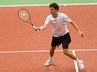 8-2-10, Rotterdam, Tennis, ABNAMROWTT,  Robin Haase