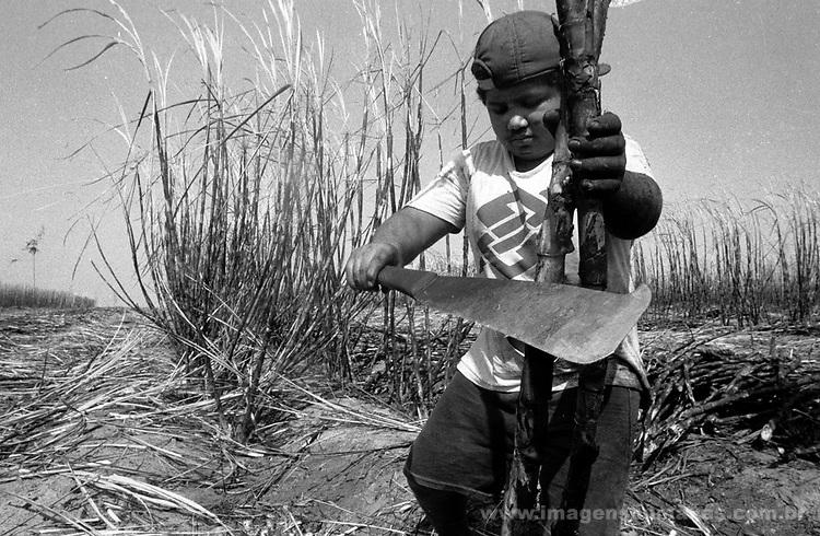 Trabalho infantil nos canaviais de Campos, Rio de janeiro. .I work infantile in Campos' sugar cane plantations in Rio of January