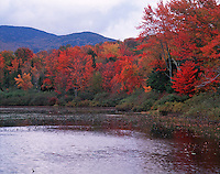 Autumn landscape of Elbow Pond in the White Mountain National Forest, surrounded by fall foliage with a mountain ridge in the background. New Hampshire.