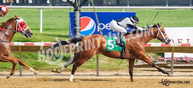 Jambles winning at Delaware Park  on 5/25/15