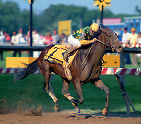 Horse racing; racehorse; Thoroughbred; racetrack, Summer Squall, 1989 Preakness Stakes, Pat Day, Dogwood Stable, Neil Howard
