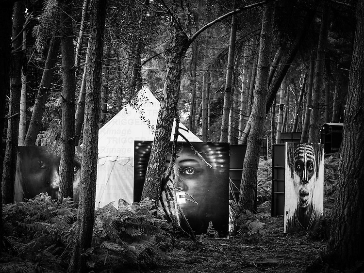 Paintings in the woods at a music festival
