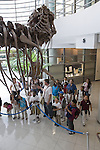Berkeley CA Second grade teacher informing students at UC Berkeley Paleontology Museum about Tyrranosaurus rex model on school field trip