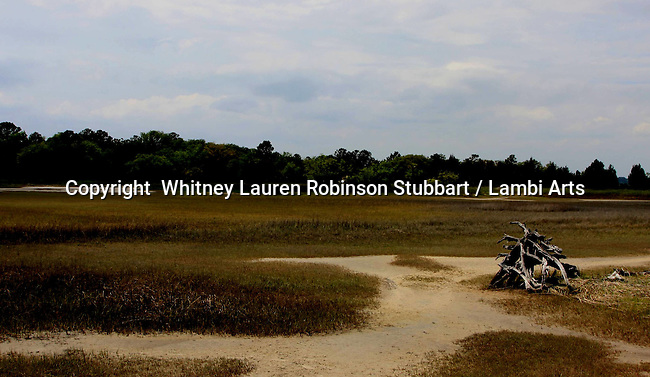 Breathtaking Scenic Photography Lowcountry<br /> South Carolina, Savannah, Charleston, Inlets, sea, sunsets, boat, oyster, shells, birds, sea birds, beach, storm, palm trees, sunrise, docks, etc.