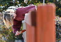 NWA Democrat-Gazette/DAVID GOTTSCHALK  Charlotte Carnes brushes on a layer of stain Monday, November 10, 2015, on the fence at Fayetteville Chiropractic on College Avenue in Fayetteville. Carnes was unsure of how long the job would take to complete.