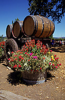 Winery in Napa Valley, California, USA