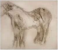BNPS.co.uk (01202 558833)<br /> Pic: ChiswickAuctions/BNPS<br /> <br /> A lost and unfinished drawing of a horse by the artist Lucian Freud has emerged for sale at auction for £60,000.<br />  <br /> The celebrated Brtitish artist gave up on his study of Goldie which he started while visiting the Wormwood Scrubs Pony Centre in west London.<br /> <br /> Now Sister Mary-Joy Langdon, who runs the centre, has decided to sell the drawing to raise funds for the facility