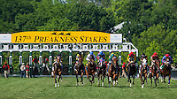 The field rushes up the stretch for the first time in the James W. Murphy Stakes on Preakness Day at Pimlico Race Course on May 19, 2012