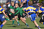 NELSON, NEW ZEALAND - AUGUST 31: 2019 Mike 7's Tournament at Green Meadows in Stoke. 31 August 2019, (Photos by Barry Whitnall/Shuttersport Limited)