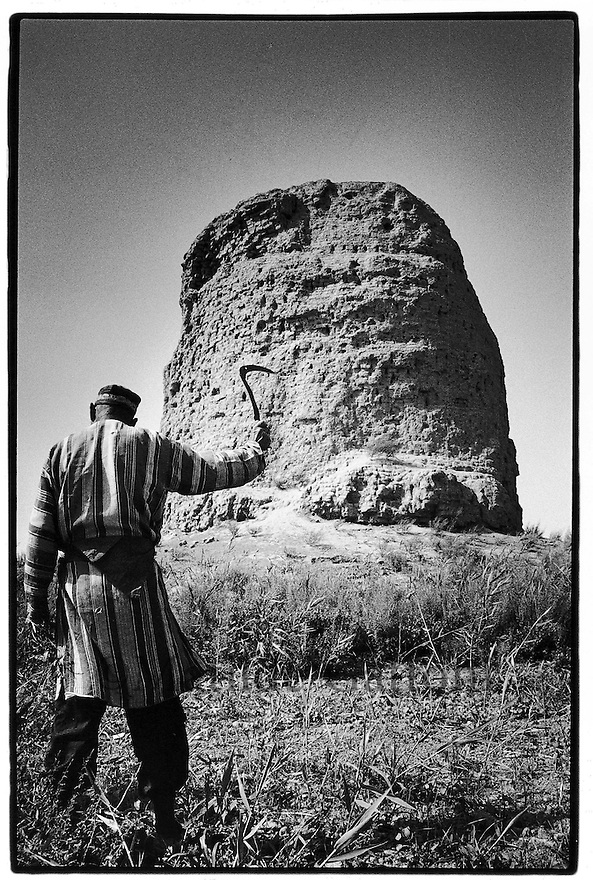 Uzbekistan - An old farmer working in a potato field where an old Buddhist library stands in the background.