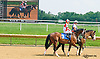 Normandy Invasion at Delaware Park on 7/1/15