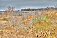 Fall at the  W. Darcy McKeough Floodway. It is the largest flood diversion project in Ontario. The floodway was completed in 1984 to reduce the threat of flooding in the Town of Wallaceburg. The floodway is situated approximately twelve kilometres north of Wallaceburg in Sombra Township.
