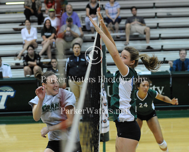 Images from a match between the Tulane Volleyball Team and alumni.