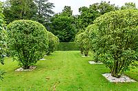 France, Loir-et-Cher (41), Cheverny, château de Cheverny, le Jardin des apprentis