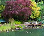 Vashon Island, WA: Pond with surrounding deck, Froggsong garden in summer