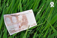 Ten Euros banknote on grass (Licence this image exclusively with Getty: http://www.gettyimages.com/detail/81867344 )