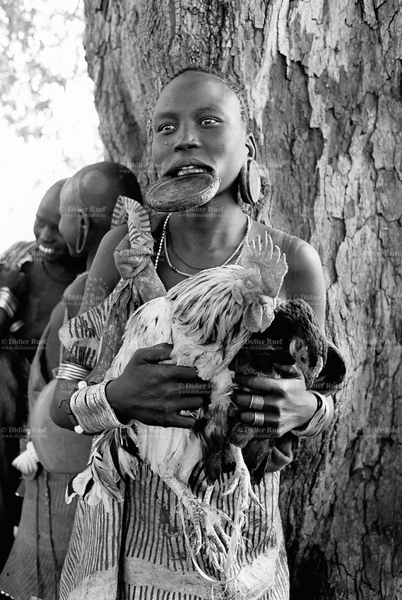 """Ethiopia. South Omo Zone. Salamago district. Muizo. Young woman with a rooster and a chicken. Muizo is a place with just palm trees and water for people and their cattle. Mursi tribe. Agro-pastoralist group. Nomadic. Mursi women are known as """"disk-lip"""" women.The bottom lip is slit along its full length and the front bottom row of teeth are pulled out to accomodate the ceramic disk  which is handmade with a rim around which the stretched lip is pulled. The disk is seen as a symbol of beauty and wealth, and often the younger girls will pierce and strech their ear-lobes, inserting a matching disk in the extended lobe. Mursi women and girls like to have artistic and stylish haircuts. They wear metal bands on their wrist (silver bracelets) and their dresses are made out of cow's leather. The Mursi tribe is located in the Debub Omo Zone (South Omo Zone) of the Southern Nations, Nationalities and Peoples's région. © 2001 Didier Ruef"""