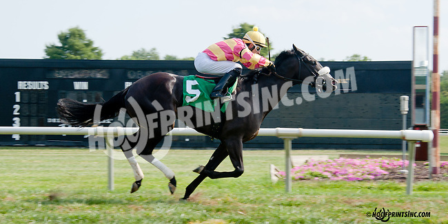 A Little Bit Sassy winning at Delaware Park on 9/21/13